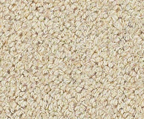 Earth weave rainier wool carpet for Wool carpeting wall to wall